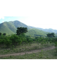 The Land and Ecology by Rwenzori Art Centre